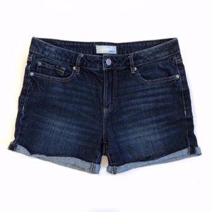Garage Shorts Favorite Short Dark Wash